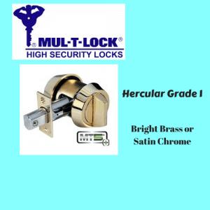 MT5+ Hercular